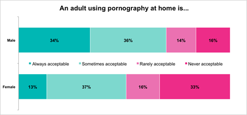 Porn at home by men and women